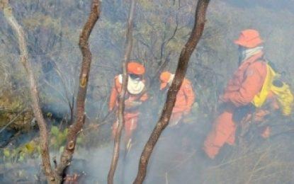 Incêndio na Chapada completa cinco dias e governo intensifica ações de combate